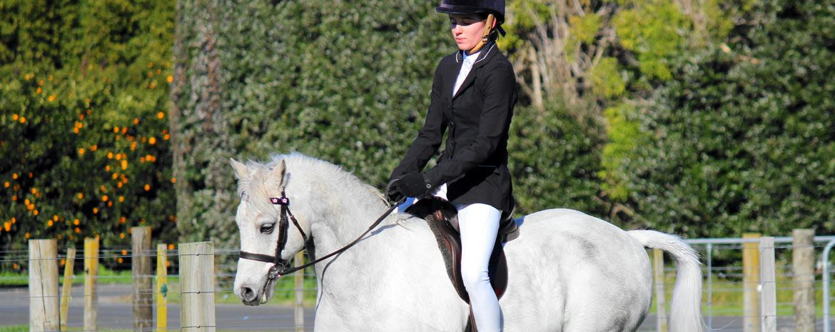 Equestrian clothing from Ridir Clothing